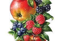 ovocie,zelenina a hríby