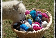 Knitting and Yarn / Fiber, skeins, related, how-to