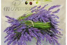 Lavender&purple