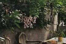Provence - inspiration for PF scenes / Breezy // Casual // Romantic // Aromatic // Herbal // Home of Master Artists