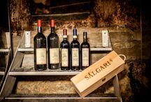 Cantina SALGARI. Our Wines. I nostri Vini / Valpolicella Classico Wines.  Vini Valpolicella Classico.