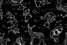 cielo estelar