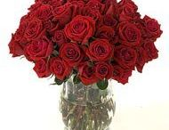 Send flowers to Bulandshahr / These beautiful flowers for your beloved to show your emotion of love. http://www.onlinedelivery.in/flowers-delivery-in-bulandshahr.aspx