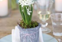 DIY - wiosna / spring