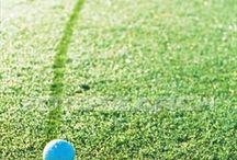 Golf..my healthy addiction / by Shauna Fought