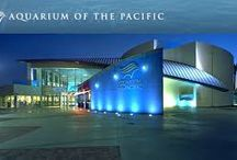 Aquarium of the Pacific - Long Beach, California / While you are attending the 2017 NPELRA Annual Training Conference, make time to visit the Aquarium of the Pacific. http://www.aquariumofpacific.org/
