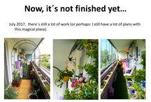 My green journey / Balcony transformation