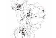 Rita blommor