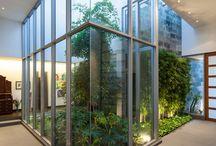 zieleń wewnętrzna/interior landscape