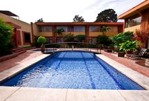 Piscina - Outdoor swimming pool / Piscina rodeada por exóticos jardines, terraza y áreas públicas