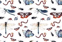 Insects pattern / Insects Pattern