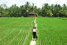 Choses à faire à Ubud, Bali, Indonésie