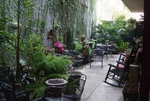 New Orleans Courtyards