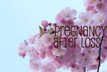 Pregnancy after loss / The journey of pregnancy will never be the same.