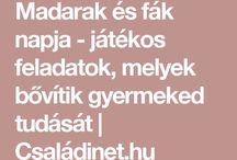 Sarud