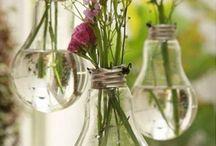 ornari flori