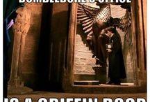 Meme di harry potter