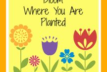 Bloom, grow where planted