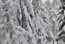 masyw snieznika