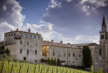 Vineyards wedding venues / Tuscany, Umbria, Apulia and the North of Italy offer beautiful modern or rustic venues to celebrate your wedding among the vineyards!