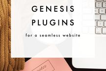 Genesis wordpress