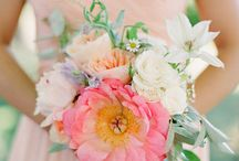 Wedding - Bouquets / Bouquets for the Bride