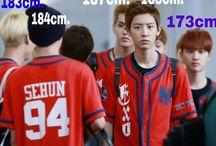 EXO / Dorky EXO