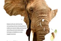 The African Elephant Project / The African Elephant Project class at The University of Alabama