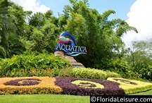 Aquatica - SeaWorld's Water Park