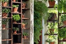 Repisas para plantas