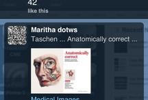 Maritha dotws