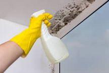 Tips untuk Rumah / Temukan berbagai berbagai macam tips untuk rumah anda, mulai dari dekor murah dan mudah, bersih-bersih, dan tips bermanfaat lainnya - hanya di homify.