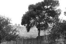 LUGARES: CASTILLO DE GIBRALFARO / Imágenes de esta fortificación y de sus vistas.