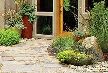 gardening / by Carey Thompson-Bostwick