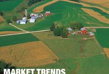 Market Watch / Featuring all the latest RE/MAX Press Releases, Market Updates/Changes/Insights, and more
