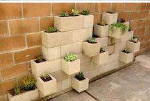 dinding tanaman