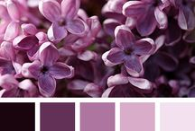 The Purple Palette  /  Dedicated to all things purple, and all shades of purple. From Lavender and Lilac, to Amethyst and Aubergine and every shade in between.