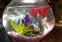 Fishbowl/ terrarium / Handmade blown glass on driftwood
