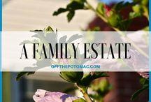 offthepotomac.com / Living | Parenting | Indulging