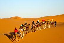 Zagora Sahara Trip Experience