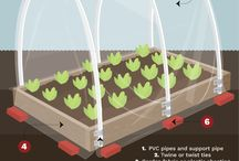 Winter Gardening: Grow Covers and Tunnels / Use grow covers to help keep your produce from freezing over the winter months!