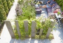 Jardín patio