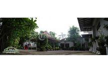 Rumah Luas di Tengah Kota Jogja