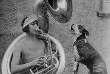 Historycznie / Archiwalne, stare zdjęcia. Przecież psy towarzyszą ludziom od setek lat!