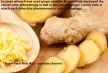 10000 times more efficient than chemo - Ginger (Zingiber officinale)