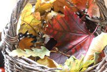 Kids activities - autumn