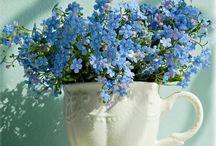 Blomster er herlig