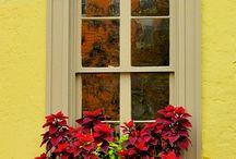 Наличники и цветы на окне