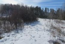 Land For Sale Eau Claire Wisconsin Area