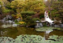 Wedding Ideas / by Kristin Hinck